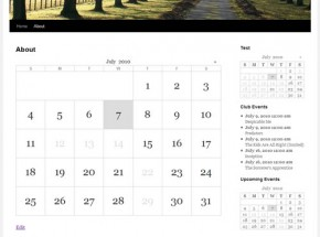 Google Calendar Events